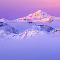 Glacier Peak Alpenglow - Purple by Misao  Okada