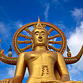 Golden Buddha by Adrian Evans