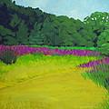 Golden  Meadow by Robert Rohrich