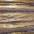 Golden Surf by Susan Cole Kelly
