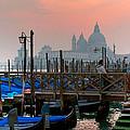 Gondole. Venezia. by Juan Carlos Ferro Duque