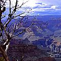Grand Canyon 1 by Mike Nellums
