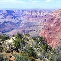 Grand Canyon 8 by Will Borden