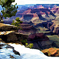 Grand Canyon  by Patricia Stalter