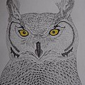 Great Horned Owl by Gerald Strine