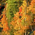Hang Gliding The Autumn Colors by Gary Baird