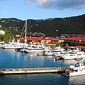 Harbor Paradise by Gary Wonning