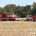 Harvest Time 1 by Roger Look