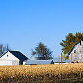 Harvest Time by Edward Peterson