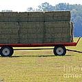 Hay Wagon by J McCombie