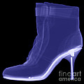 High Heel Boot X-ray by Ted Kinsman