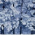 Hoarfrost On Trees In Winter, Birds by Mike Grandmailson