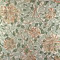 Honeysuckle Design by William Morris