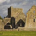 Hore Abbey, Cashel, County Tipperary by Richard Cummins