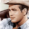 Hud, Paul Newman, 1963 by Everett