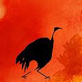 Hunter Bird by Asok Mukhopadhyay