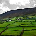 Irish Countryside by Edward Peterson