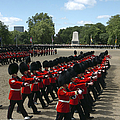 Irish Guards March Pass During The Last by Andrew Chittock
