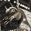 Joby The Carousel Horse by Beth Riser