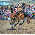 Jordan Valley Arena Action 2012 by Mary Williams Hyde