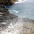 Kauai Spray by Linda Dunn