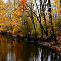 Kearsley Creek by Scott Hovind