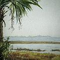 Kiawah Island S.c. by Jody Gould