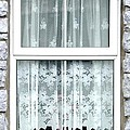 Lace Curtains by Kathleen Horner