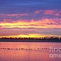 Lagerman Reservoir Sunrise by James BO  Insogna