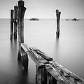 Laguna Veneto by Nina Papiorek