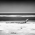 Lake Huron by Tanya Harrison