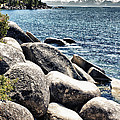 Lake Tahoe Vista by Linda Dunn