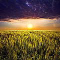 Light Bright by Phil Koch