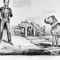 Lincoln: Cartoon, 1864 by Granger