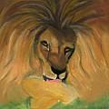 Lion by Caitlin Pennington