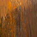 Liquid Gold by Susan Herber