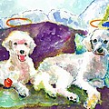 Little Angels Poodles by Marsden Burnell