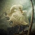 Lovely Lady by Trish Tritz