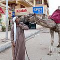 Man With His Camel by Carol Ailles