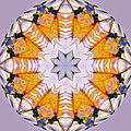 Mandala Of Love by David  Brown