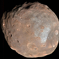 Mars Moon Phobos by Stocktrek Images