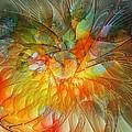 Metamorphosis by Amanda Moore