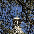 Minaret Through Oak by David Lee Thompson
