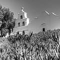 Mission San Diego De Alcala Monochrome by Bob Christopher