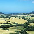 Mixed Farmland by David Aubrey