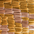 Monarch Butterfly Scales, Sem by Ted Kinsman