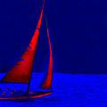Moonlight Sail by Michael Petrizzo