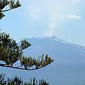 Mt. Etna by Carla Parris