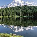 Mt Rainier Reflected In Lake Mt Rainier by Tim Fitzharris