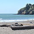 Muir Beach by Nimmi Solomon